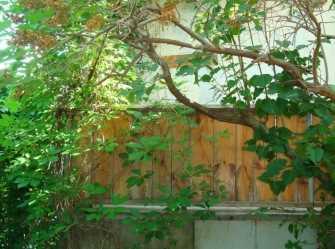 Однокомнатная квартира с отдельным двориком