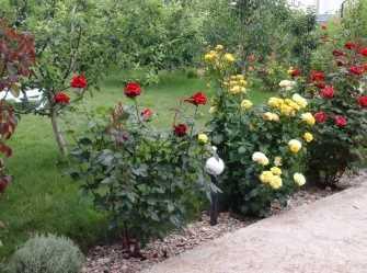 Домик с садом и бассейном