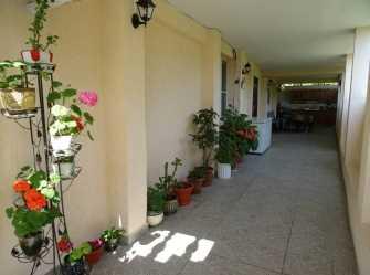 У Асиды гостевой дом в Гудауте
