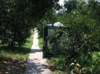 Эмарк мини-гостиница в Новом Афоне