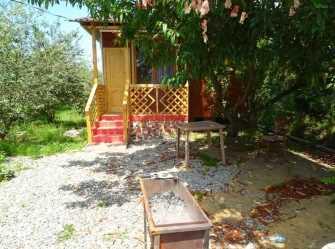 Инь-Янь гостевой дом в с. Алахадзы (Пицунда) - Фото 4