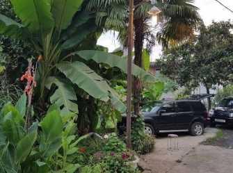 Макс гостевой дом в Сухуме