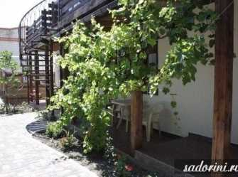 Sadorini гостевой дом в Кабардинке - Фото 4