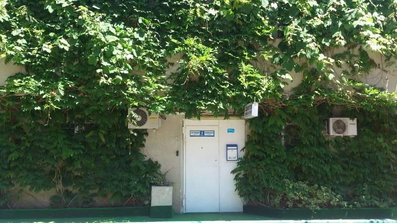 Флора Грин Сочи гостевой дом в Сочи