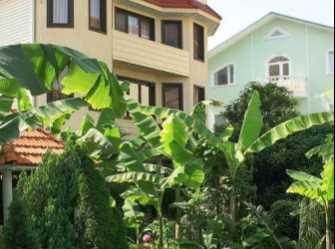 Банановый рай мини-отель в Адлере