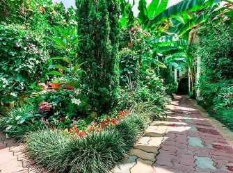 Банановый рай мини-отель в Адлере - Фото 3