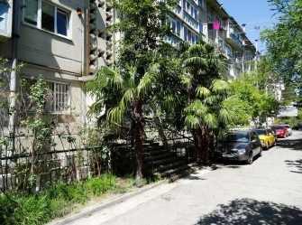 1-комнатная квартира Победы 138 в Лазаревском - Фото 2