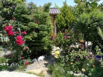 У Анны гостевой дом в Вардане