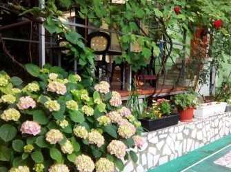Светлана гостевой дом в Туапсе