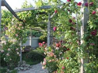 Розовый Аромат гостевой дом в Новомихайловском