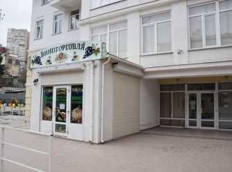 1,5 комнатная квартира на Киевской - Фото 4