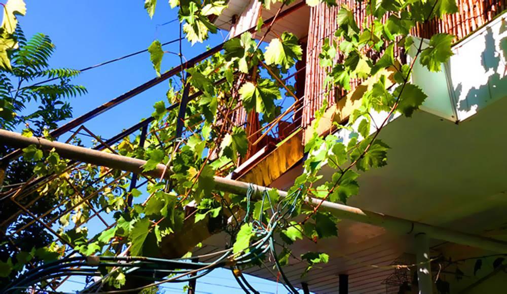 №1 Номер двухкомнатный с балконом 2 этаж во дворе бассейн